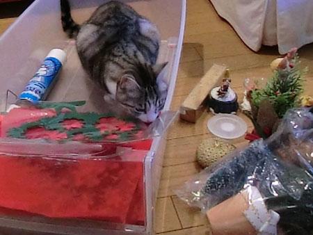 クリスマスの準備 その2  1