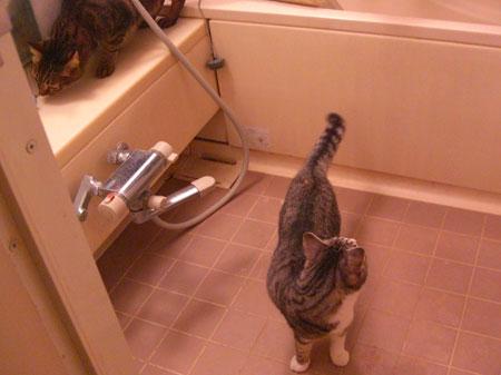 バスルームで3