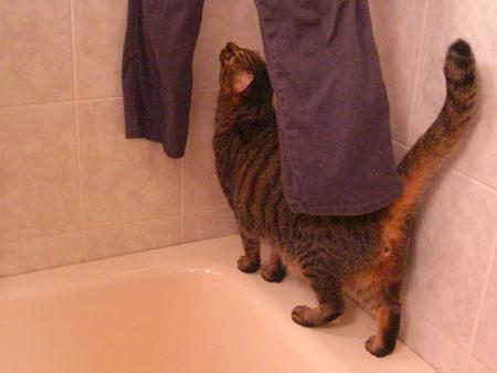 バスルームで6