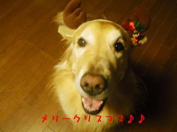 Merry X'mas♪♪