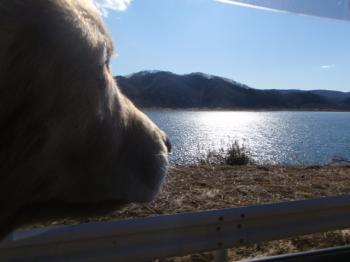 キラキラの湖です♪