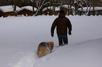 雪深い~~!