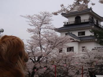 城を眺めるナナさん