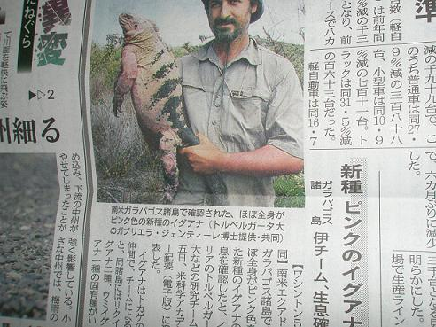 新種のイグアナ