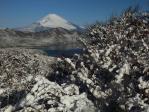 大観山雪景色