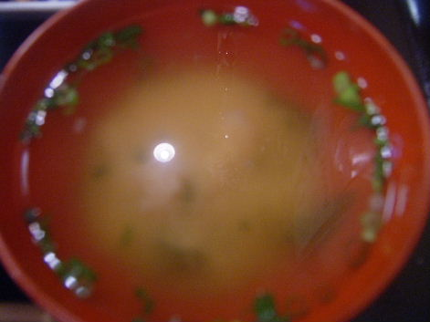 2009_0514画像0192