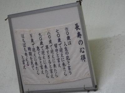 IMGP0516.jpg