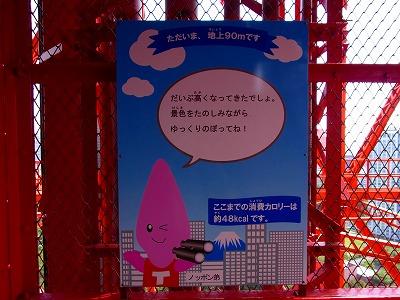 100926東京タワーRIMG0129
