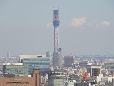100926東京タワーRIMG0138