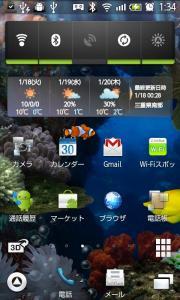 1_20110118210842.jpg
