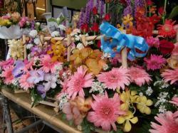 090812002 flower
