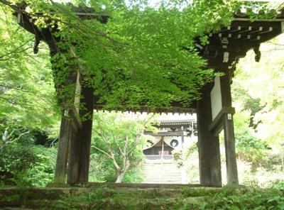 toumyouji-5.jpg