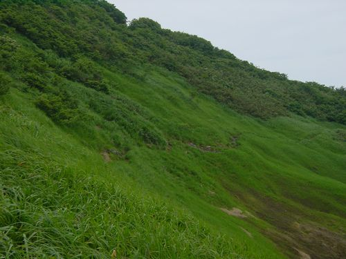 2009_0721CA.jpg