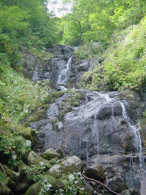 2009_0909AQ.jpg
