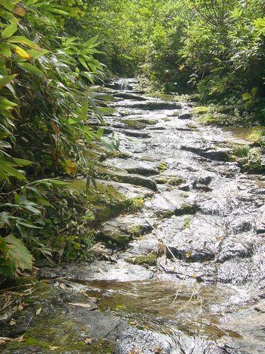 2009_0909AX.jpg