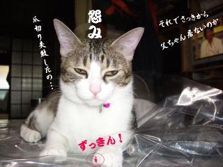 ビニるな女03