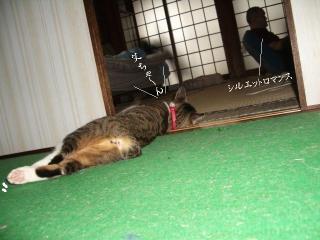 扇風機枕01