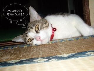 扇風機枕02