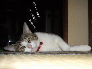 扇風機枕03