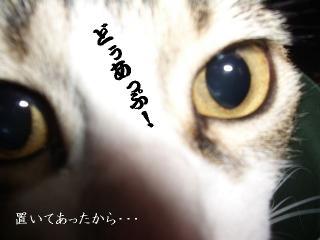 ごみ箱な女04