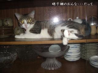 ごみ箱な女07
