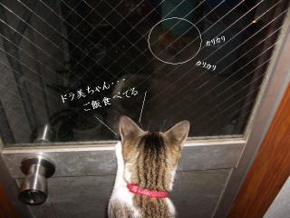 覗き見な女02