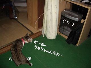 覗き見な女06
