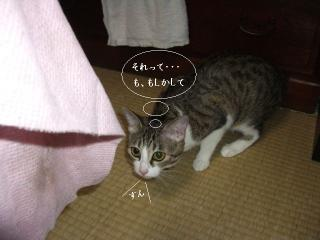 泥酔な女02