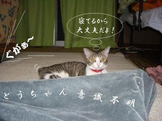 添寝愛01