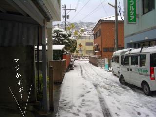 大雪こんこ01