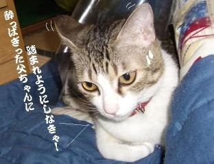長靴太郎03