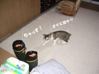 長靴太郎04