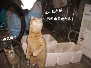 訓練中02
