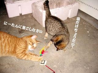 訓練中04