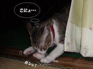 寝起きな女03