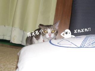 チューな女04
