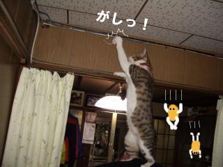 アピールな女05