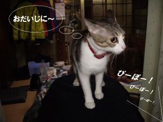 アピールな女06