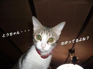 アピールな女07