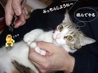 萌えな女05