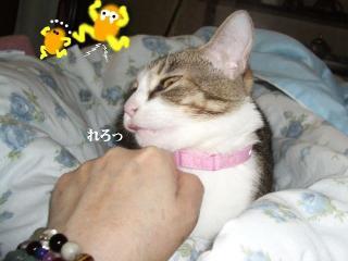 夏布団な女03
