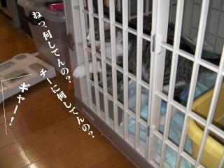 初風呂02
