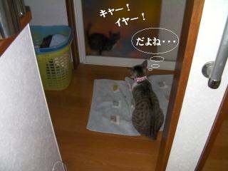 初風呂04