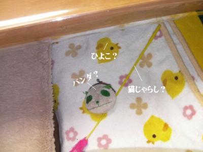 くるくる猫03