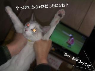 ちろみ特集01