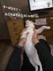 ちろみ特集02
