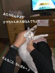 ちろみ特集03