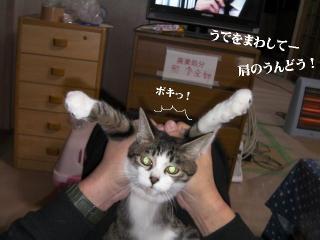 ごまみ体操02