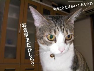 姉妹仁義04