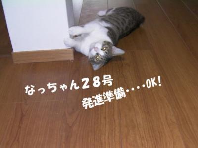 獣みち04